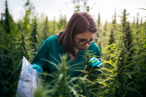 a woman smelling cannabis terpenes